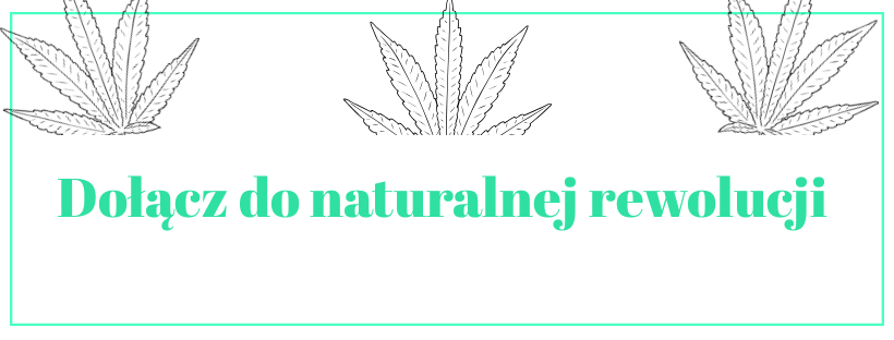 https://swiss-cannabis.yourtechnicaldomain.com/data/include/cms/Zdjecia-do-reklam/78144958_1744575449009025_1555545993930342400_n.png